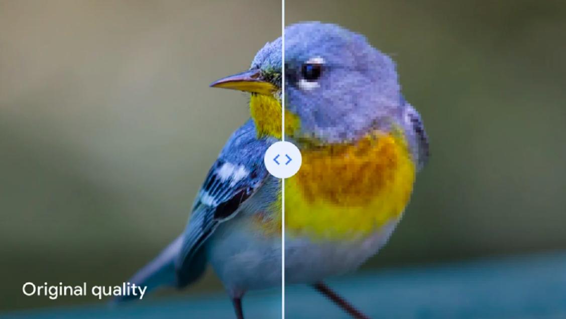 Google заявила, что режим «Высокое качество» в Photos безнадёжно портит фотографии