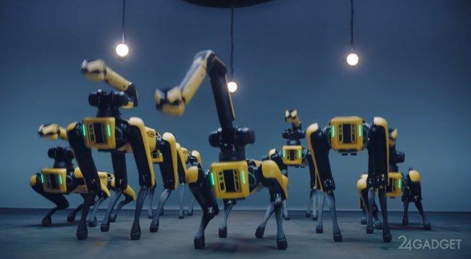 Группа собакообразных роботов Spot Boston Dynamics исполнила праздничный танец (2 видео)