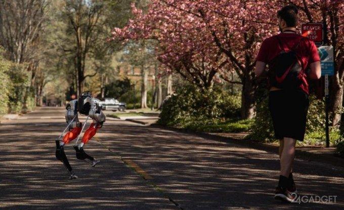 Футуристический двуногий робот Cassie установил рекорд, совершив пробежку на расстояние 5 км