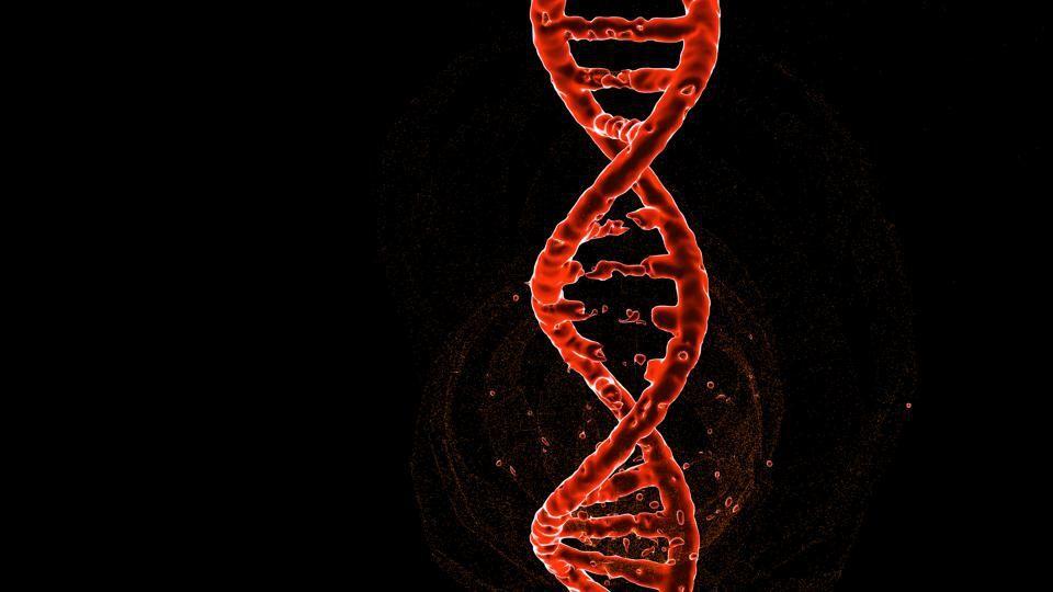 """Учёные рассказали о поиске """"генов ожирения"""""""