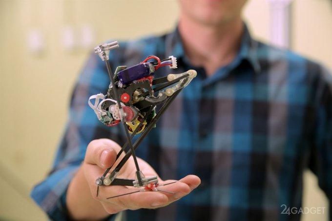 Одноногий робот-паркурщик SALTO (2 фото + видео)