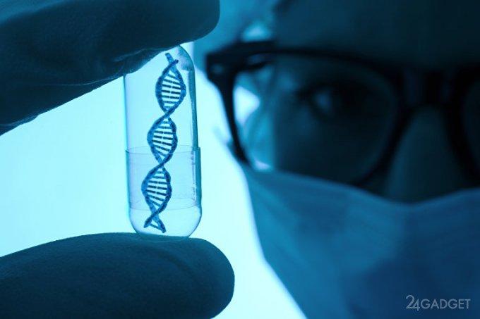 Изменение пола на генном уровне - новейшие разработки ученых из США