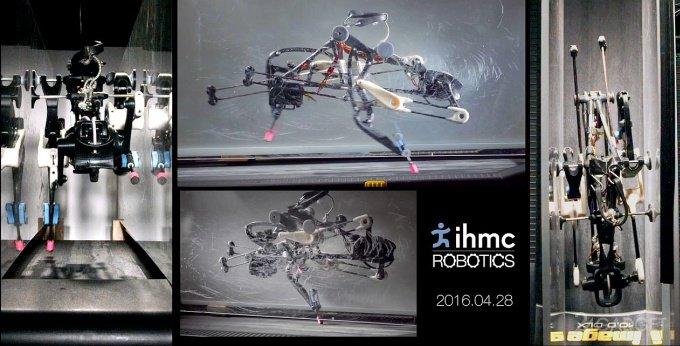 Робот-страус (видео)