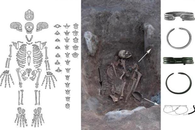 Ученые обнаружили останки древней амазонки