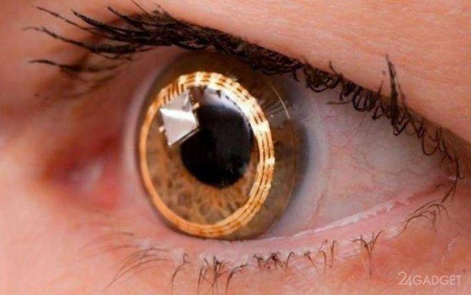 Созданы клетки сетчатки глаза необходимые для излечения слепоты