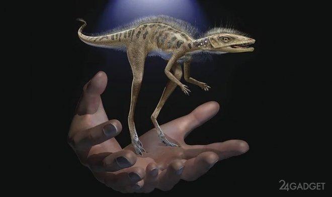 На Мадагаскаре найдены останки карликового динозавра высотой 10 см