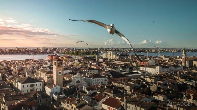Выбраны лучшие фотографии года сделанные с дронов (8 фото)