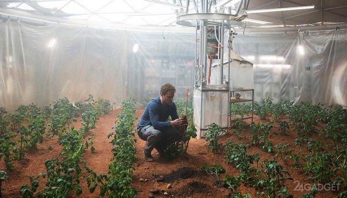 Создана модель марсианского грунта для проверки возможности выращивать растения на Марсе