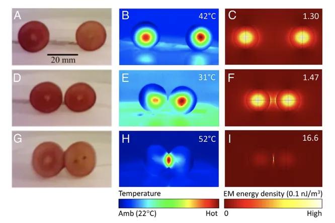 Учёные объяснили возникновение плазмы в винограде, помещённом в микроволновку