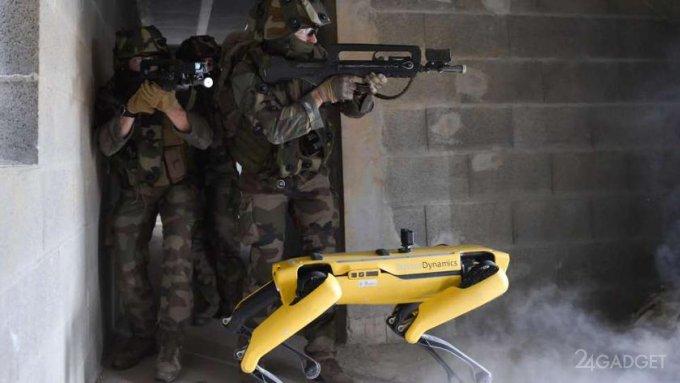 Французы тестируют робота-пса Spot на поле боя (3 фото)